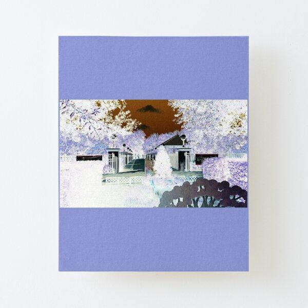 Winter Snow-II Florida WHITE background Canvas Mounted Print