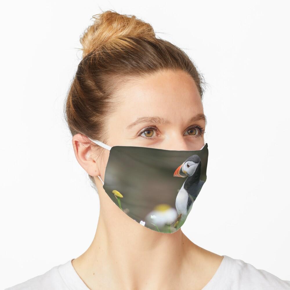 Tammy norie Mask