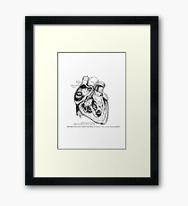 The Heart, right ventricle openned. Framed Print