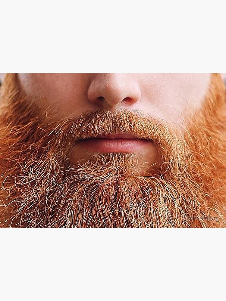 A luscious ginger beard -  Mask only by cmphotographs