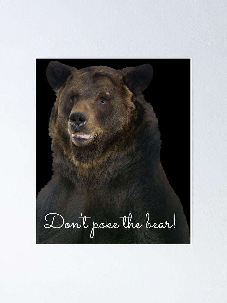 Alternate view of Don't Poke the Bear Humorous Wildlife Warning Poster
