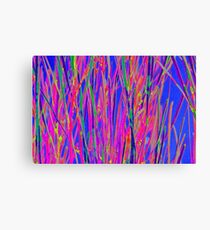 Splashes of colour - abstract Canvas Print