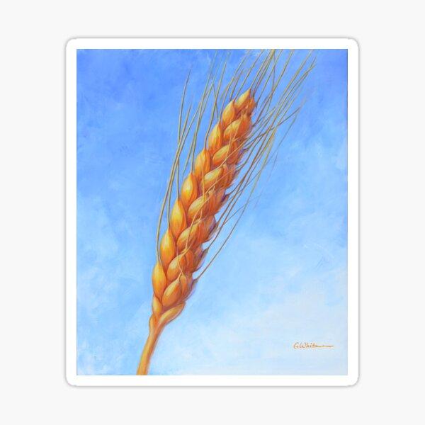 High Plains Gold wheat head Sticker