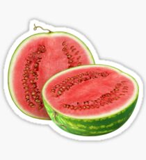 Watermelon cut on halves Sticker