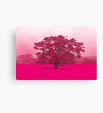 Hot Tree In A Field Of Pink Canvas Print
