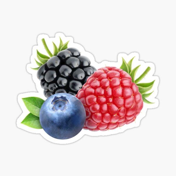 Fresh berries Sticker