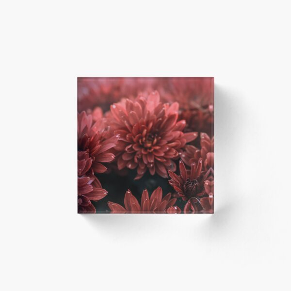Red Flowers Acrylic Block