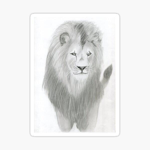 Realistic Lion Drawing Art -- Lion Graphite Pencil Sticker