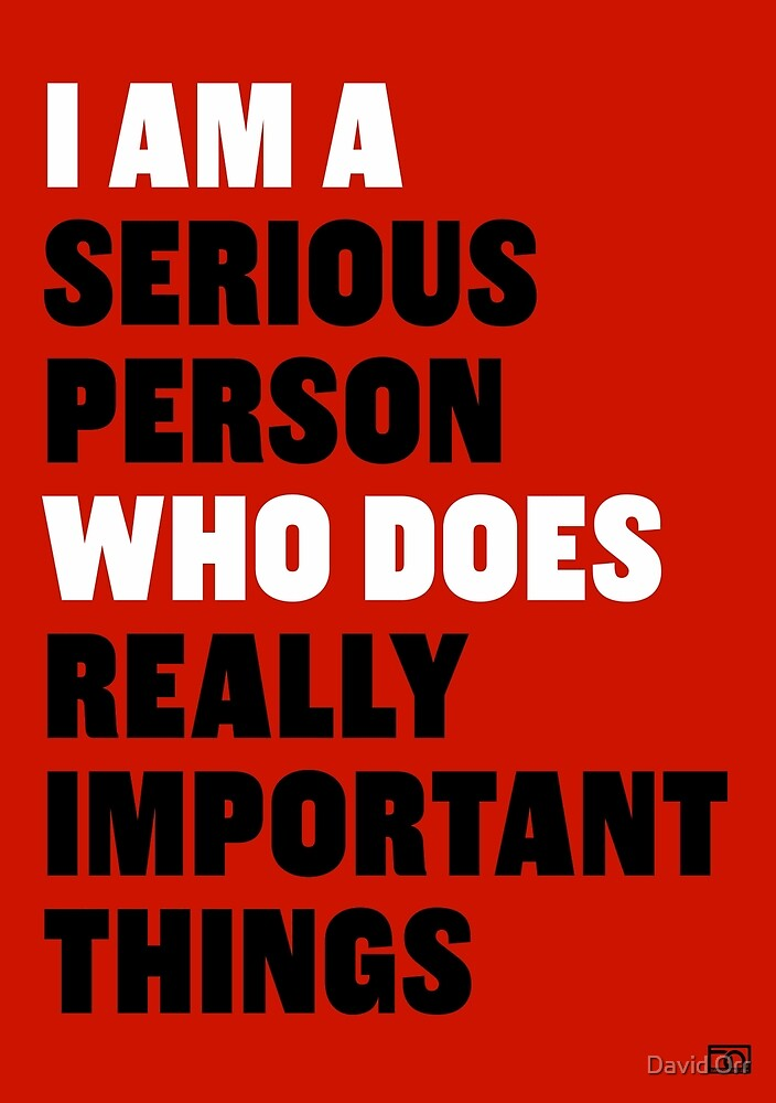 I am a Serious Person Who Does Really Important Things by David Orr