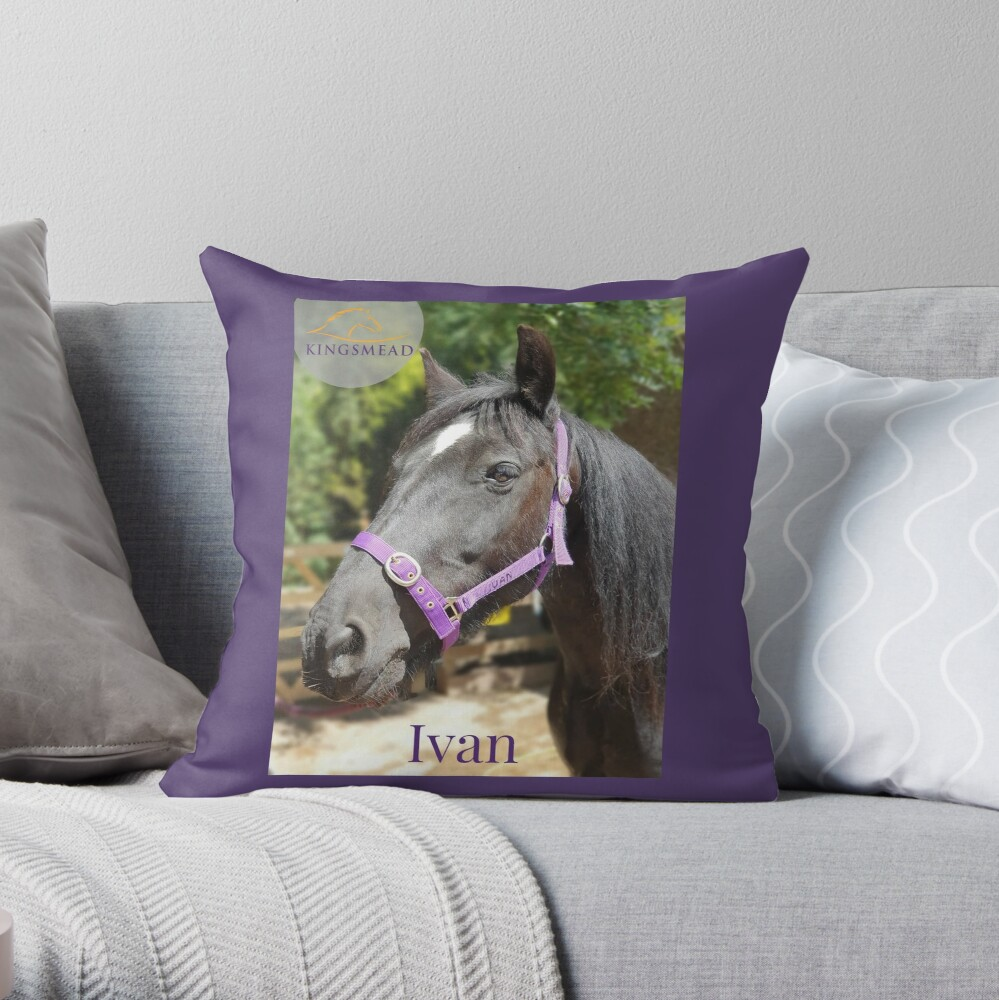 Ivan's Collection Throw Pillow