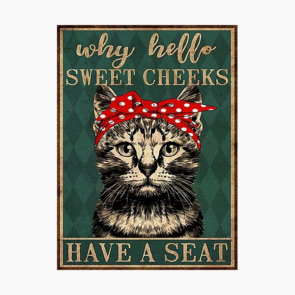 Cat Why Hello Sweet Cheeks Have A Seat Photographic Print
