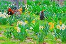 Arkansas Spring by NatureGreeting Cards ©ccwri