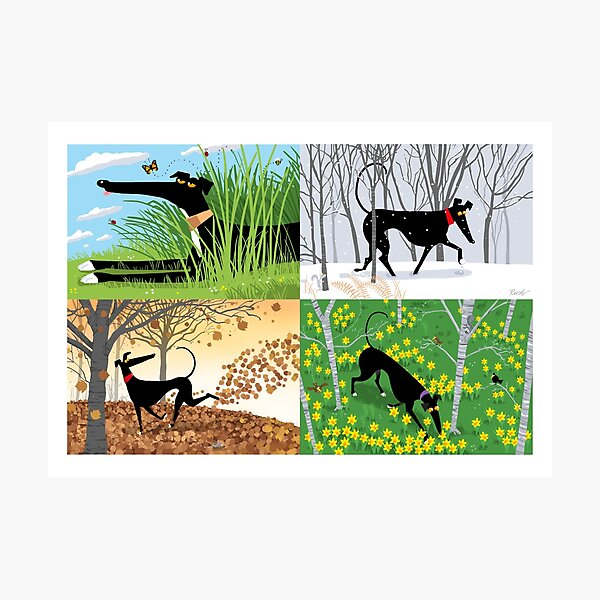 Hound Seasons Photographic Print