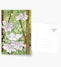 Clematis on Trellis Postcards