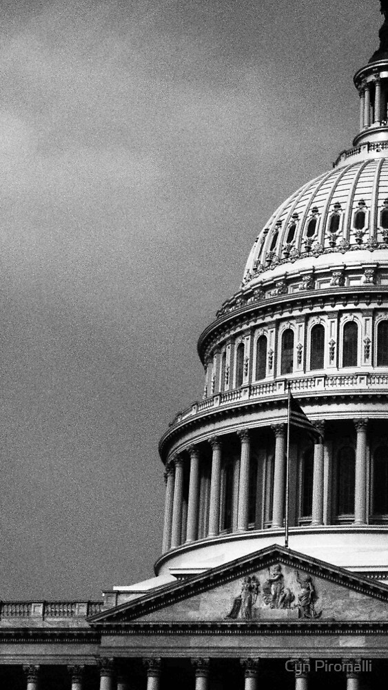 Monochrome Capitol by Cyn Piromalli