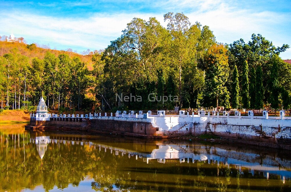 Temple Reflection - Indian Countryside by Neha  Gupta