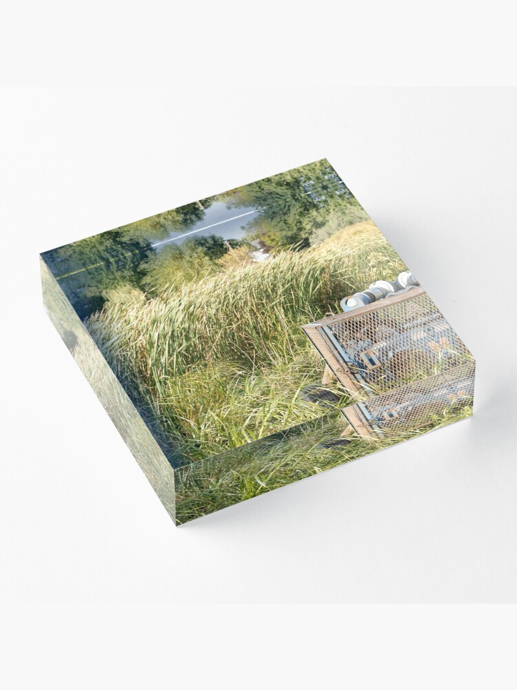 Alternate view of Sump Pump In The Reeds Acrylic Block