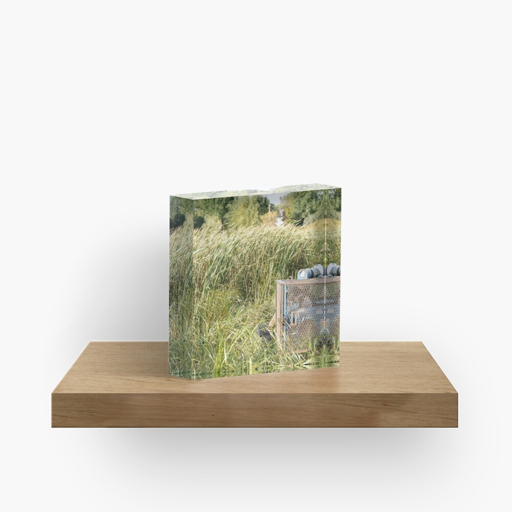Sump Pump In The Reeds Acrylic Block