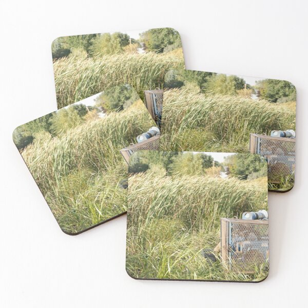 Sump Pump In The Reeds Coasters (Set of 4)