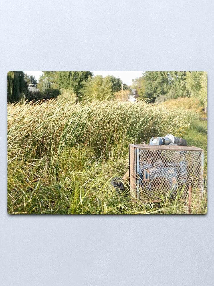Alternate view of Sump Pump In The Reeds Metal Print