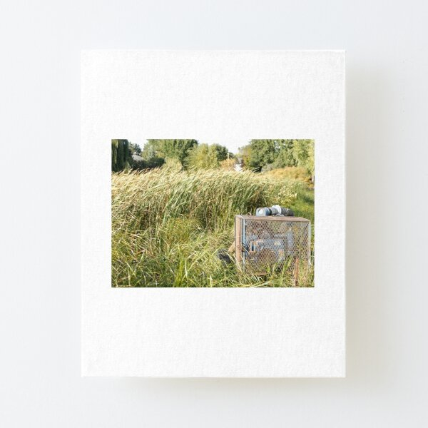 Sump Pump In The Reeds Canvas Mounted Print
