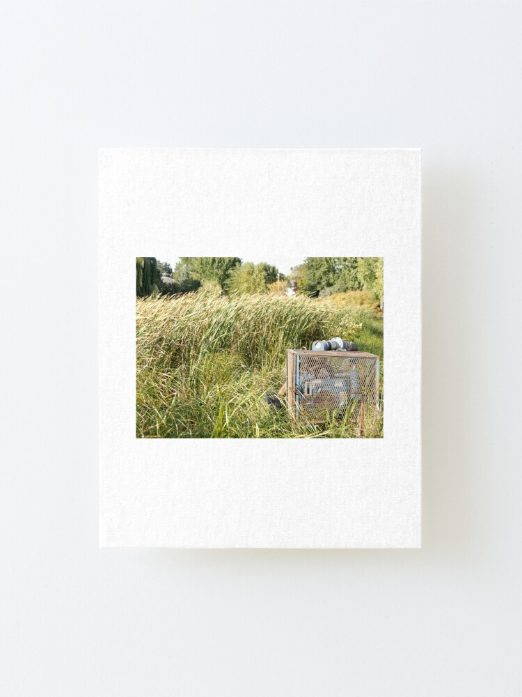 Alternate view of Sump Pump In The Reeds Mounted Print