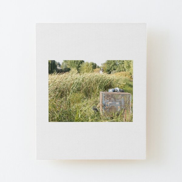 Sump Pump In The Reeds Wood Mounted Print