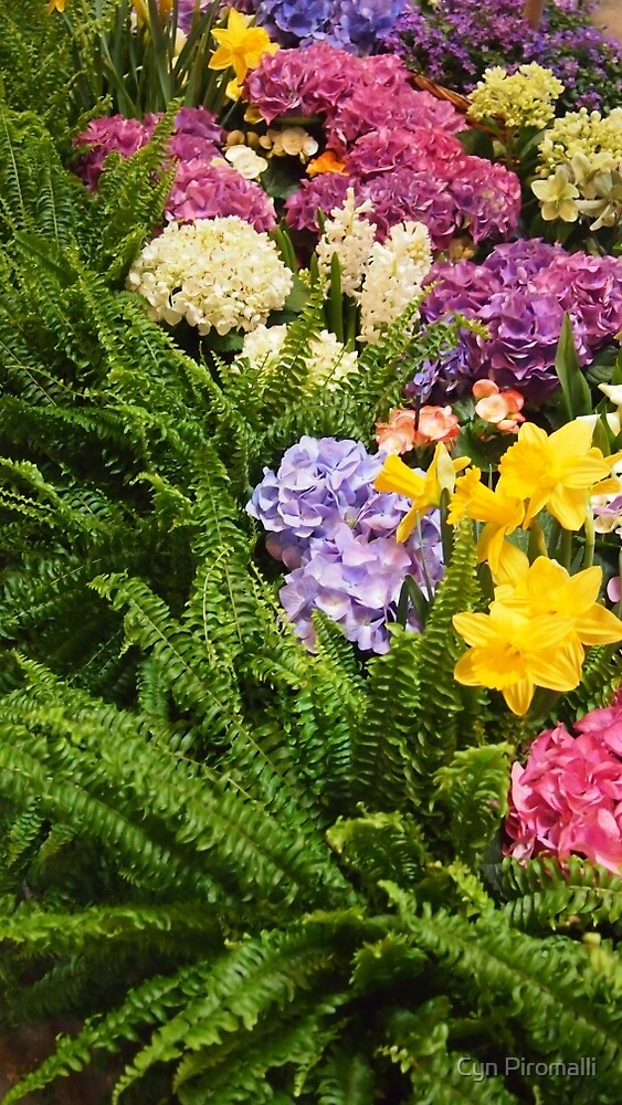 Gallery Flowers by Cyn Piromalli