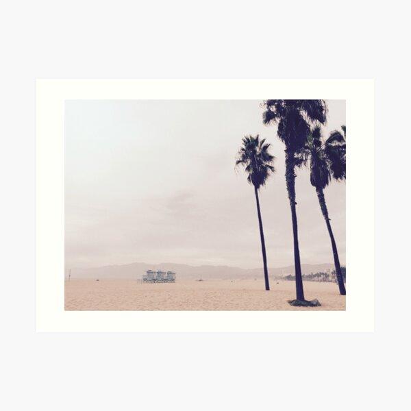 Palmen in Venice Beach, Los Angeles  Kunstdruck