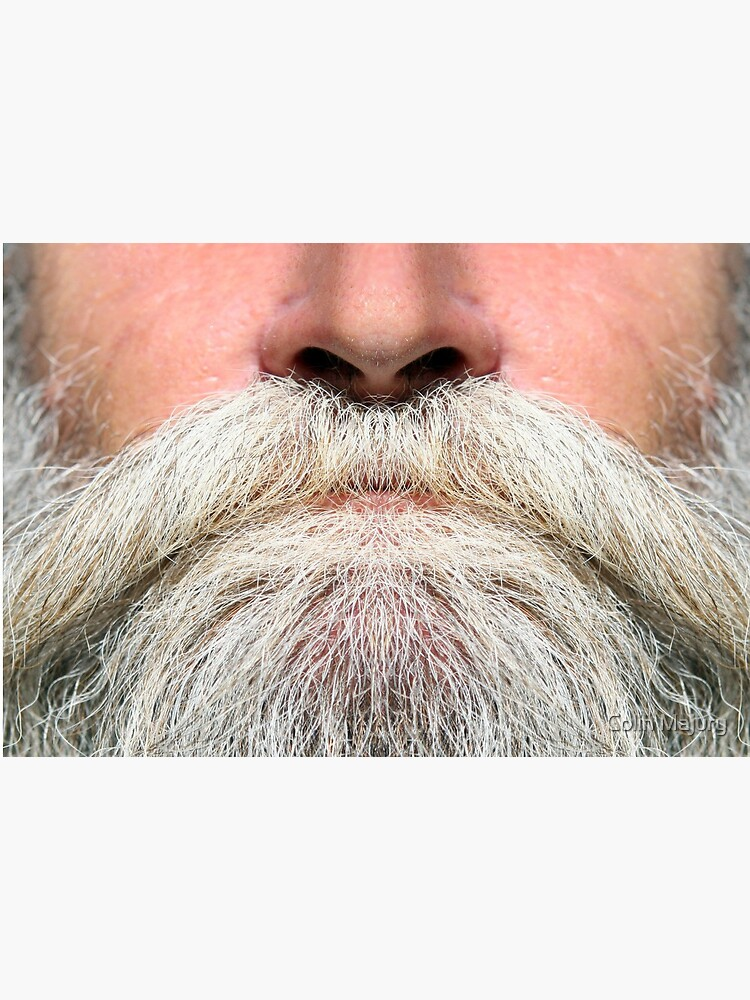 A luscious grey beard -  Mask only by cmphotographs