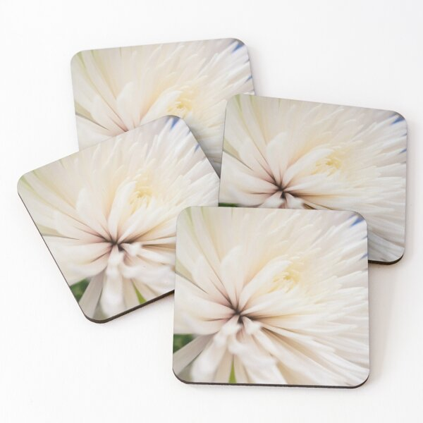 Poofy White Flower Coasters (Set of 4)