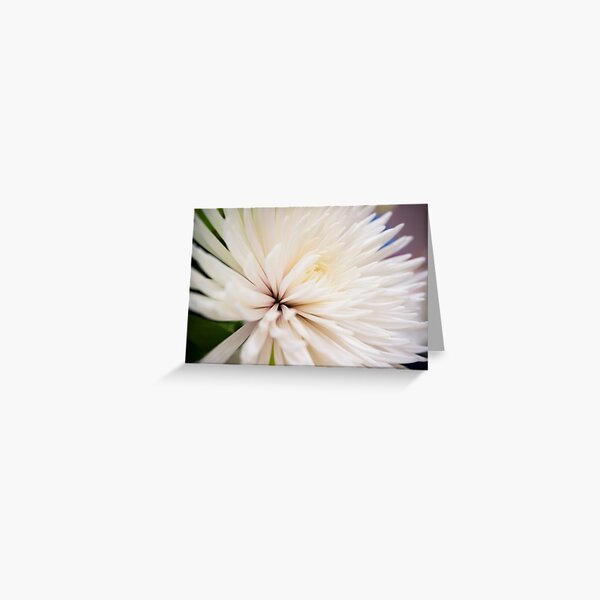 Poofy White Flower Greeting Card