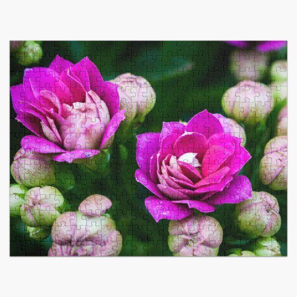 Bright Pink Flowers Jigsaw Puzzle