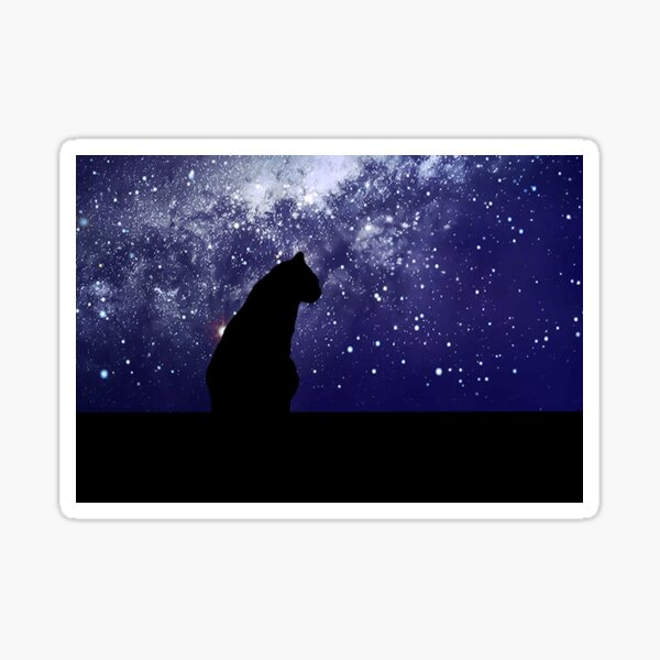 Cat contemplating the universe Sticker