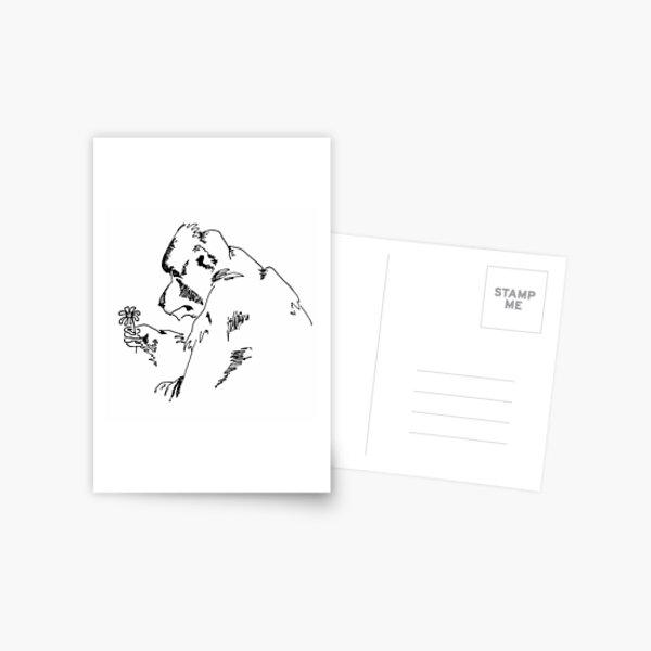 Hamadryas Baboon with Flower Postcard
