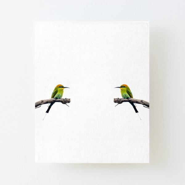 Rainbow Bee Eater Canvas Mounted Print