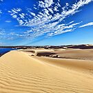 Sand Dunes at Fowlers Bay by Peter Doré