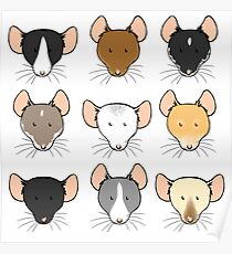 Ratty Faces Poster