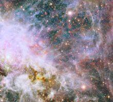 Star formation in the Tarantula Nebula. Sticker
