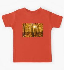 Impressions of Forests - Sunburst in the Golden Forest  Kids Tee