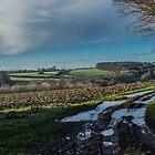 The Hampden Country, Buckinghamshire by Robertsphotos