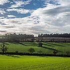 Shadows across the Hampden Country, Buckinghamshire by Robertsphotos