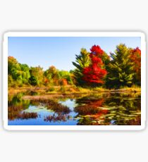 Impressions of Forests - Bright Red Maple, Reflected Sticker