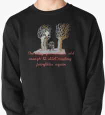 CS Lewis Narnia fairytale quote Pullover