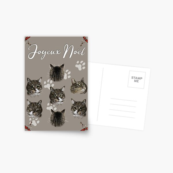 Minou Luna Christmas Card Postcard