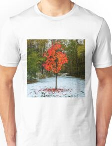 Seasons Unisex T-Shirt