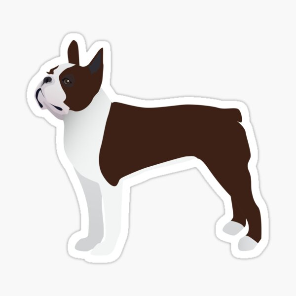 Brown Boston Terrier Basic Breed Design Sticker
