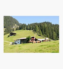 Remote alpine farmhouse photographed in Tirol, Austria  Photographic Print