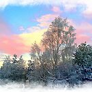 Winter in Norway by Bente Agerup