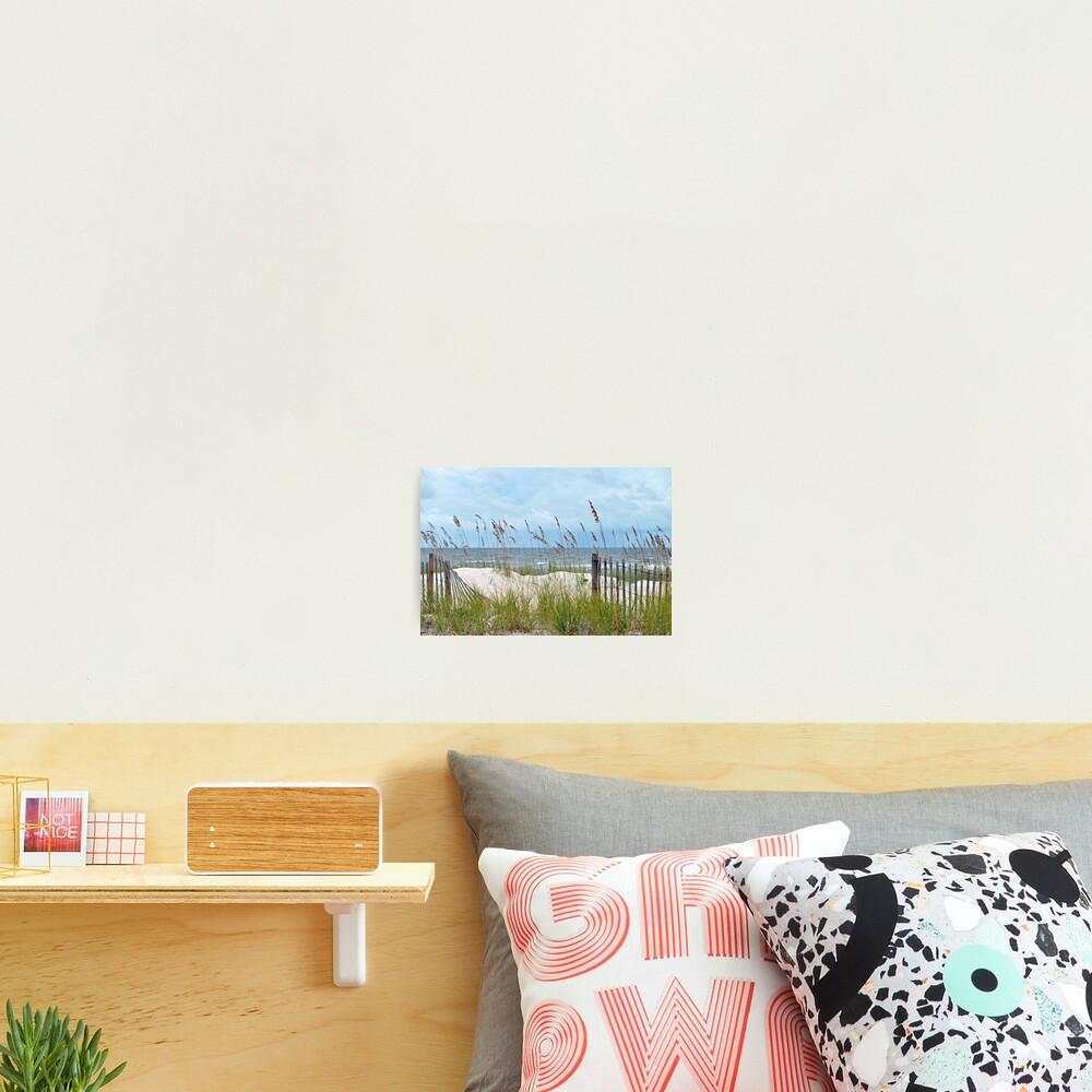 Storm Fence Photographic Print